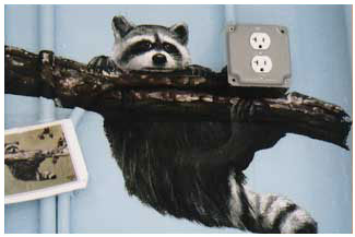 mural-raccoon