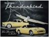 mural-thunderbird