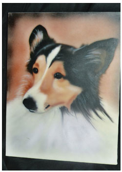 pet-portrait-collie-head