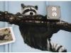 mural-raccoon